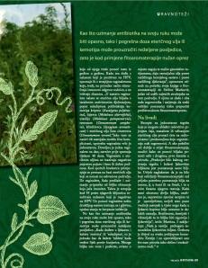 SENSA, Biljke zenskog roda 4