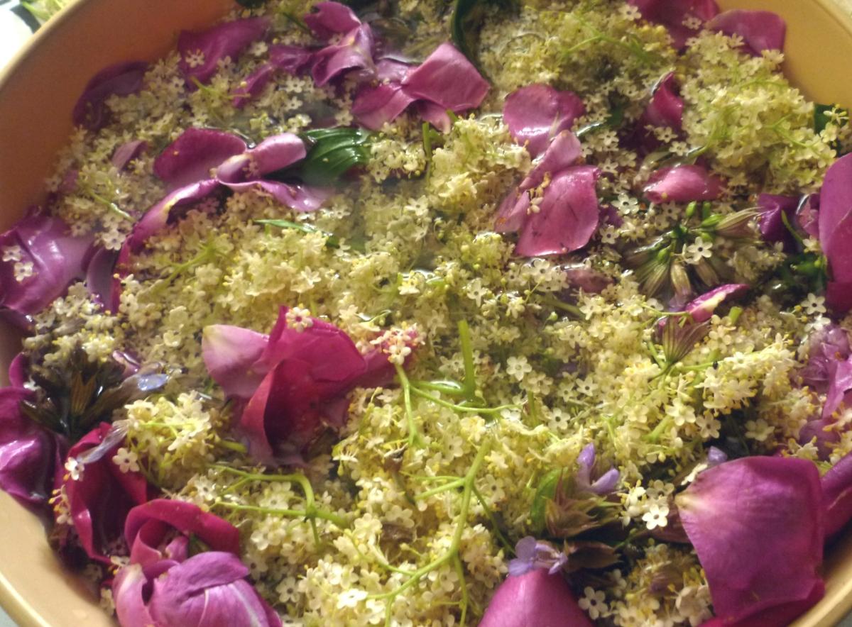 Sirup od cvijeta bazge